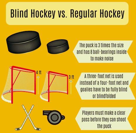 Blind Hockey vs Regular Hockey